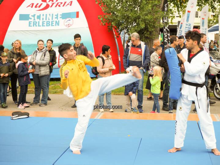 Taekwondo, Tritt