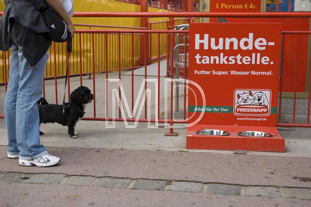 Hundetankstelle, © www.martina-draper.at (08.07.2013)