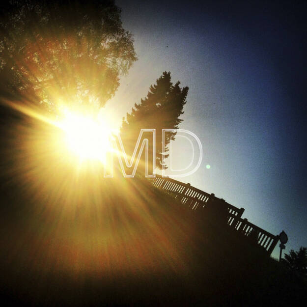 Gegenlicht, © www.martina-draper.at (08.07.2013)