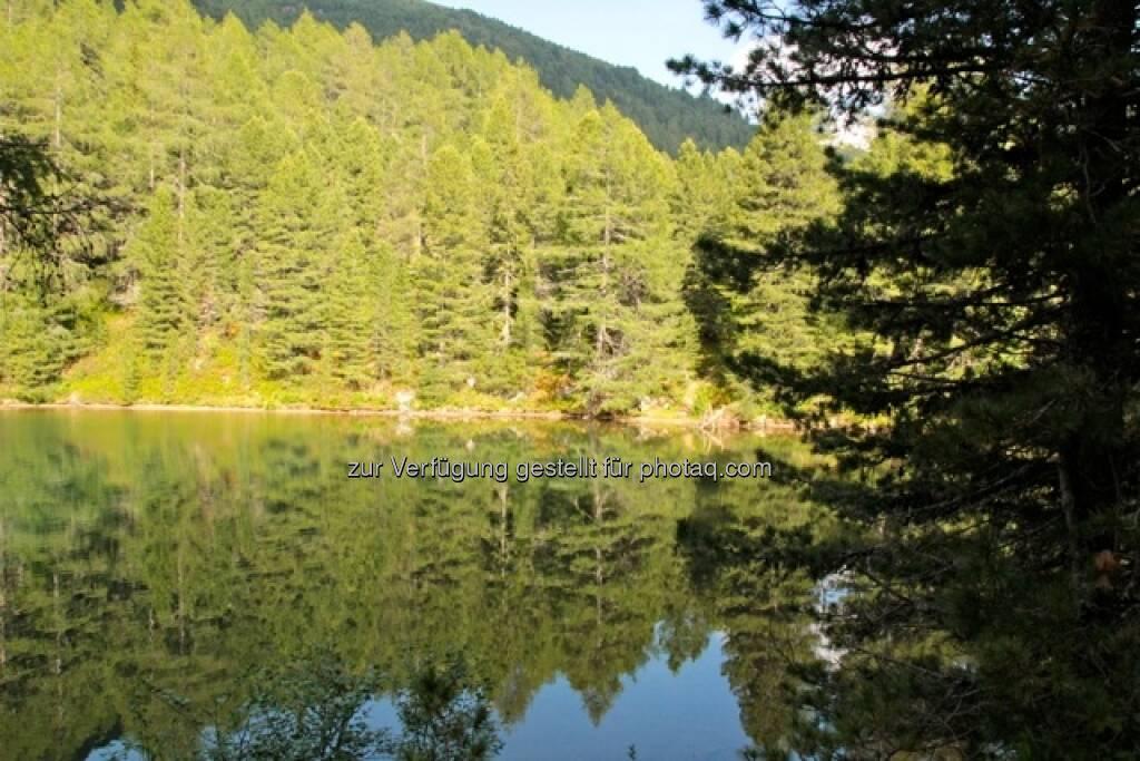 Wald, See, Natur; Alpbach, © Susanne Lederer-Pabst (10.07.2013)
