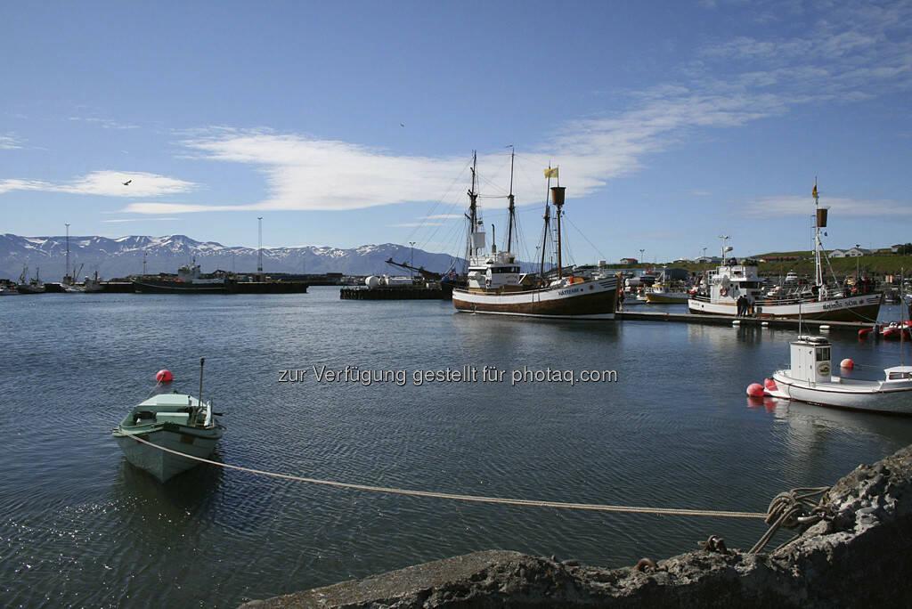 Husavik, Hafen - Island, © Gabriele Hartweger (15.07.2013)