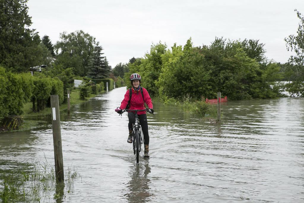 Martina Draper im Hochwassereinsatz auf dem Weg zum Verbund-Kraftwerk, siehe http://martina-draper.at/2013/06/03/land_unter_in_greifenstein#bild_10178, © Martina Draper/Christian Drastil (27.07.2013)
