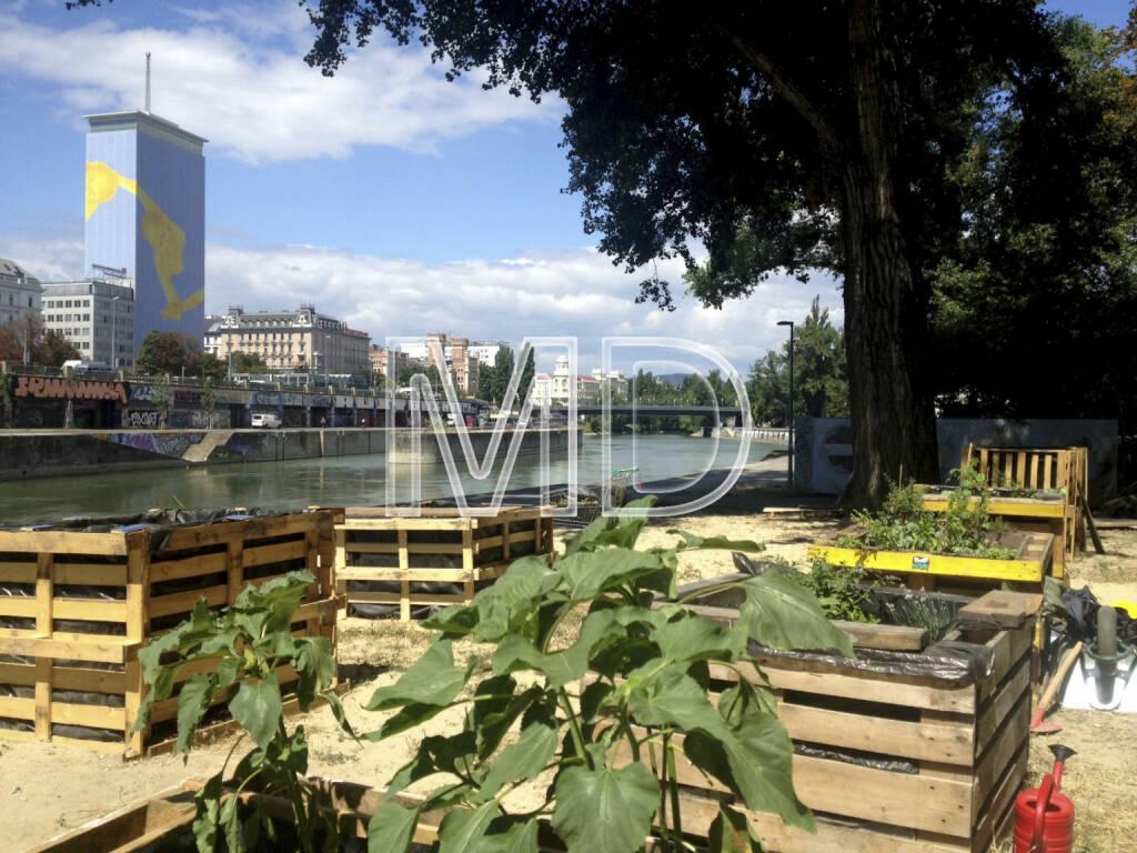 Ringturm, Donaukanal, Hochbeete, © www.martina-draper.at (01.08.2013)