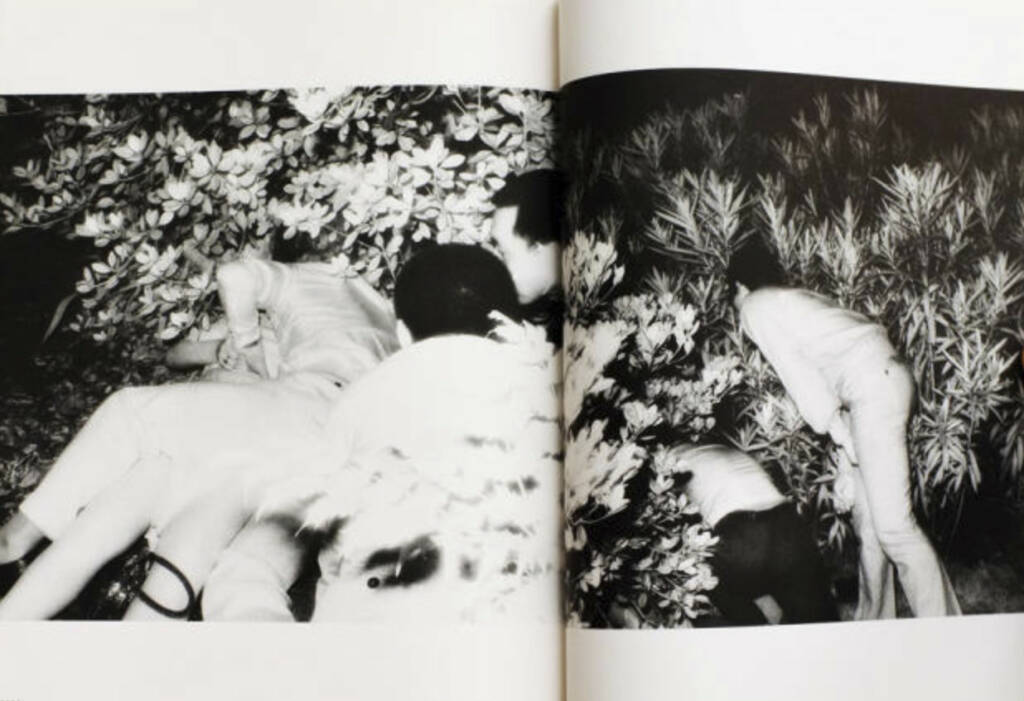 eine Seite aus Kohei Yoshiyuki - Document Kouen / Document Park, Preis: 350-550 Euro, http://josefchladek.com/book/kohei_yoshiyuki_-_document_kouen_document_park (02.08.2013)