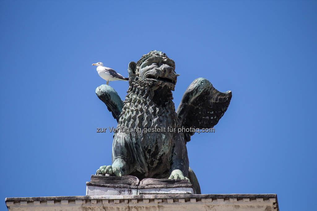 Venedig, Möwe, Löwe mit Flügeln, © Nina Krist (Philoro) (05.08.2013)