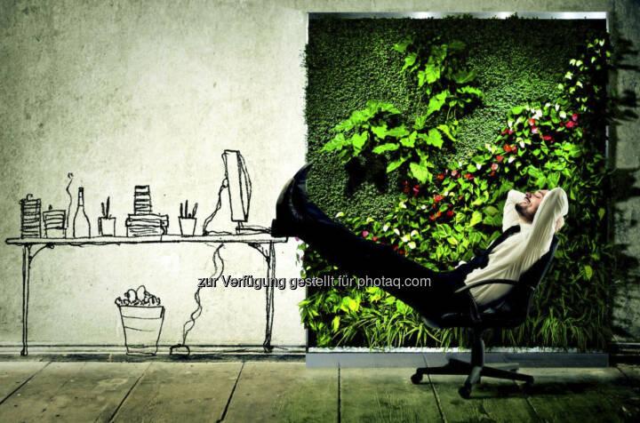 relax eine florawall ist eine mit lebenden pflanzen begr nte wand f r innenr ume sie frischt. Black Bedroom Furniture Sets. Home Design Ideas