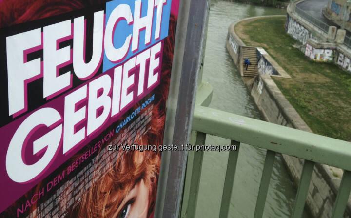 Feucht Gebiete, Donaukanal, Wasser