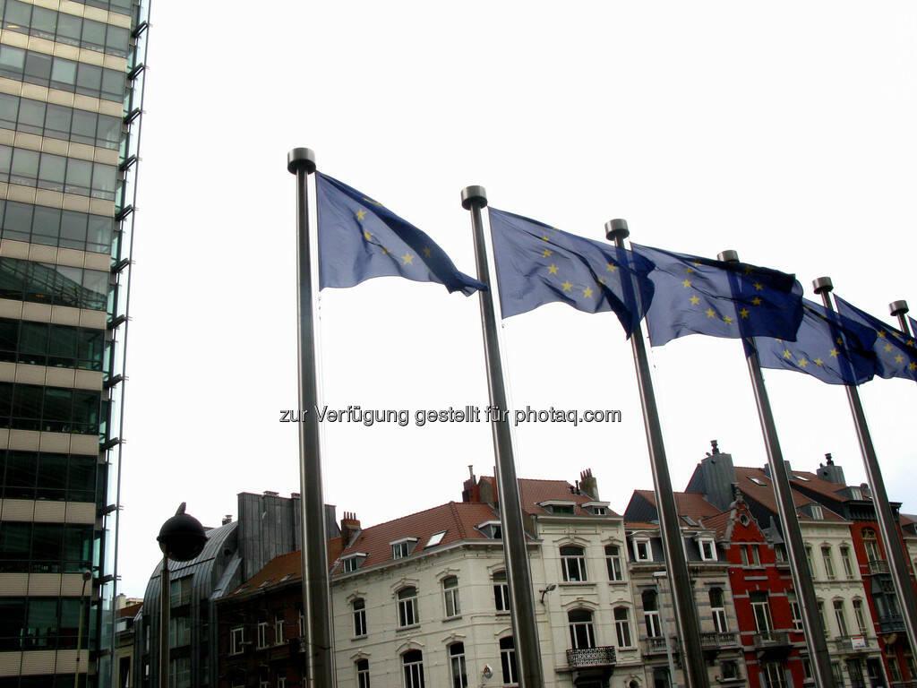Brüssel, Fahnen, EU, © Wolfgang Wildner (08.09.2013)