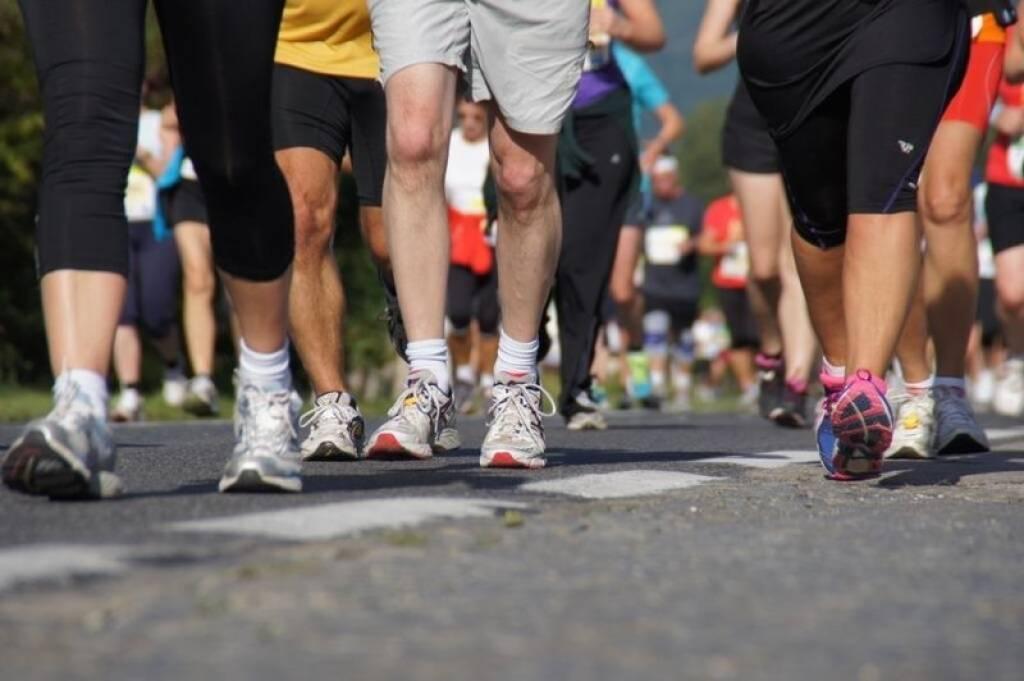 Wachau Marathon 2013, © Bezirksblätter und Franz Sperrer (15.09.2013)